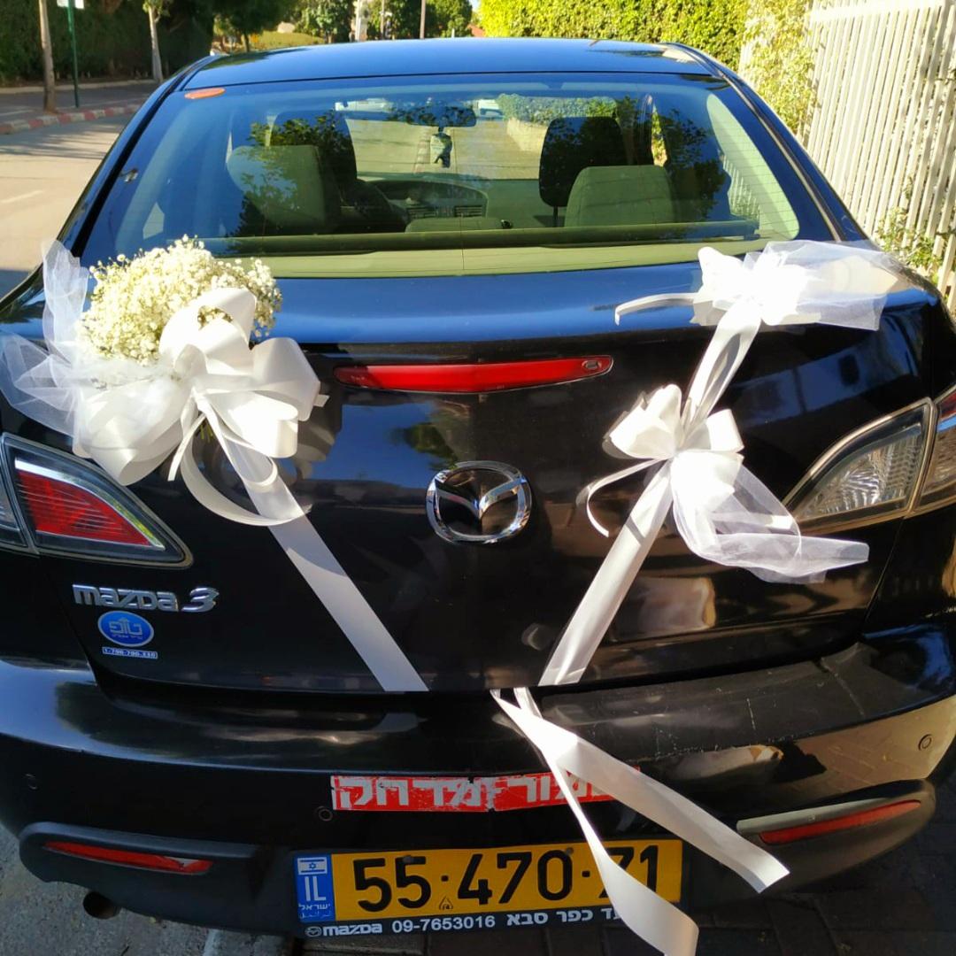 קישוט רכב חתונה