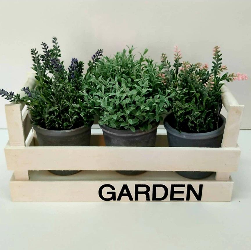 אדנית garden